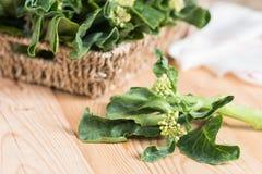 Fresh raw green Chinese kale or Kailaan or Hong Kong kale. Fresh raw green Chinese kale or Kailaan or Hong Kong kale Stock Photography