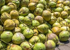 Fresh raw green coconuts. Background Stock Photo