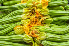 Fresh raw green courgettes with flowers. Horizontal composition detail in market Royalty Free Stock Photos