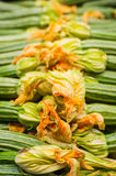Fresh raw green courgettes with flowers  selective focus Royalty Free Stock Photos