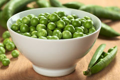 Fresh Raw Green Peas. Fresh raw green pea (lat. Pisum Sativum) in white bowl (Selective Focus, Focus on the peas in the middle of the bowl Royalty Free Stock Photos