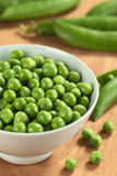 Fresh Raw Green Peas. Fresh raw green pea (lat. Pisum Sativum) in white bowl (Selective Focus, Focus on the peas in the middle of the bowl Stock Photos