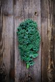 Fresh raw green superfood kale curly cabbage leaves. On wooden background Royalty Free Stock Image