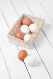 Fresh raw group of eggs put on white table. Two fresh Egg, Chicken Egg on table Royalty Free Stock Photo