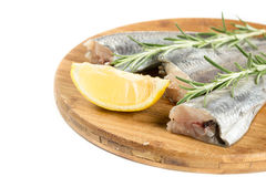 Fresh raw hake fish with lemon and rosemary branches.  Stock Images