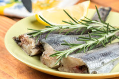 Fresh raw hake fish on the plate with rosemary and lemon.  Stock Photos