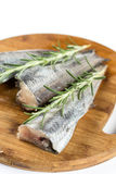 Fresh raw hake fish with rosemary branches.  Royalty Free Stock Image