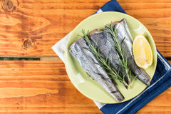 Fresh raw hake fish with rosemary and lemon on the plate with copy space.  Royalty Free Stock Images