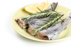 Fresh raw hake fish with rosemary and lemon on the plate.  Royalty Free Stock Photo