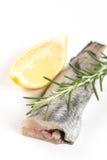 Fresh raw hake fish on the white background with rosemary and lemon.  Royalty Free Stock Photos