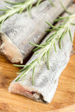 Fresh raw hake with rosemary branches in closeup macro view.  Stock Photo