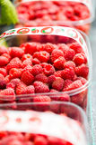 Fresh raw hand picked raspberries in plastic boxes Royalty Free Stock Images