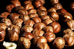 Fresh raw hazelnuts macro view. Isolated on black Stock Photo