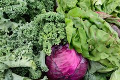 Fresh raw healthy produce purple cabbage kale beets Stock Photography