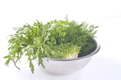 Fresh raw herbs. In a metal bowl over white background Stock Image