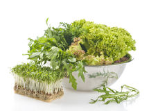 Fresh raw herbs. In a metal bowl over white background Royalty Free Stock Photo