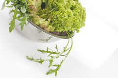 Fresh raw herbs and vegetables. Fresh raw herbs  close-up with copy space Royalty Free Stock Photography