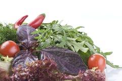 Fresh raw herbs and vegetables  on white. Fresh raw herbs and vegetables over white background Stock Photos