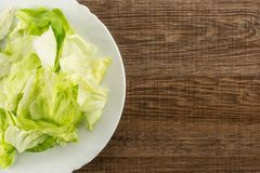 Fresh raw Iceberg Lettuce on brown wood. Iceberg lettuce fresh torn salad leaves on a white plate table top isolated on brown wood background Royalty Free Stock Images