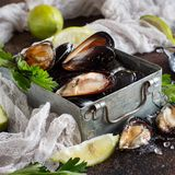 Fresh raw italian mussels with lime and parsley stock image