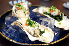Fresh raw japan oyster. With ponzu sauce Royalty Free Stock Photos