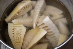 Fresh raw Japanese bamboo shoots stock photos