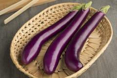 Fresh raw purple eggplants. Fresh raw Japanese purple eggplants in a basket Royalty Free Stock Images