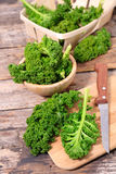 Fresh raw kale. On board Royalty Free Stock Photo