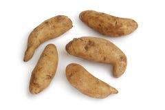 Fresh raw kipfler potatoes. On white background Royalty Free Stock Image