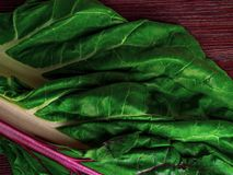 Fresh raw leaves of chard, leaf beets, mangold, swiss chard on a wooden table, copy space. Cellulose rich food royalty free stock image