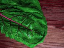 Fresh raw leaves of chard, leaf beets, mangold, swiss chard on a wooden table, copy space. Cellulose rich food royalty free stock images