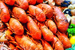 Fresh raw Lobsters in ice exposition sea market. Seafood on ice Royalty Free Stock Photography