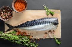 Fresh raw mackerel Royalty Free Stock Images