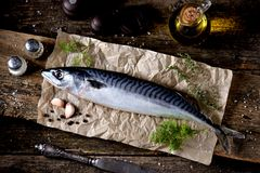 Fresh raw mackerel on an old wooden background. Tasty food Stock Photography