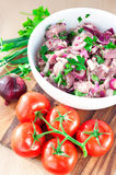 Fresh raw marinating meat for barbecue or kebab. Russian shashli. K. Ingredients for weekend picnic. Indoors stillife Royalty Free Stock Images