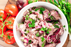 Fresh raw marinating meat for barbecue or kebab. Russian shashli. K. Ingredients for weekend picnic. Indoors stillife Stock Image