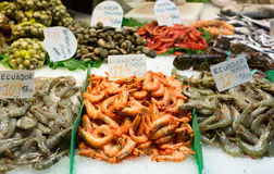 Fresh raw marine products. On market counter Royalty Free Stock Photography