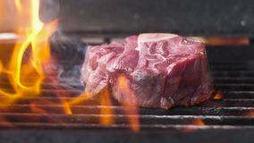 Fresh raw meat with a bone. Grilled in a flame of fire. Slow motion,close-up.  stock video