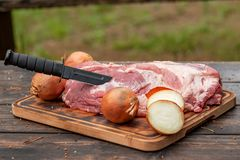Fresh raw meat with onion and black knife on wooden plate. Wild style Royalty Free Stock Photo