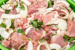 Fresh raw meat and onion sliced and marinated with parsley and spices Stock Photos