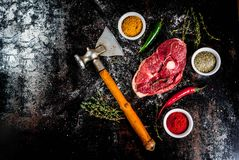 Lamb tenderloin with spices Royalty Free Stock Image