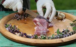 Fresh raw meat on platter with herbs. Fresh raw meat on a platter with herbs Stock Image