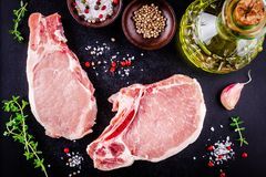 Fresh raw meat of pork on a dark background. Top view Stock Image