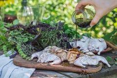 Fresh raw meat quails stock photography