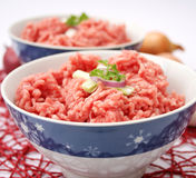 Fresh raw meat. With spices on a plate Royalty Free Stock Images