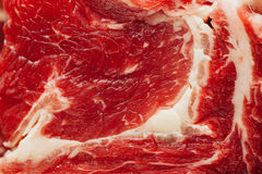 Fresh raw meat texture. Closeup view Stock Image