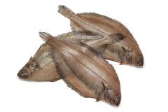 Fresh raw megrim fish. On white background Royalty Free Stock Photo