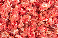 Fresh raw minced meat. Background for design Stock Image