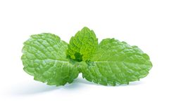 Fresh raw mint leaves isolated on white. Background Royalty Free Stock Photo