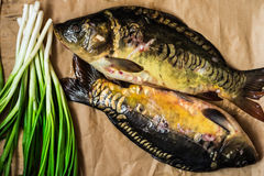 Fresh raw mirror carp fish on craft paper with a bunch of green scallion onions, top view Stock Photography